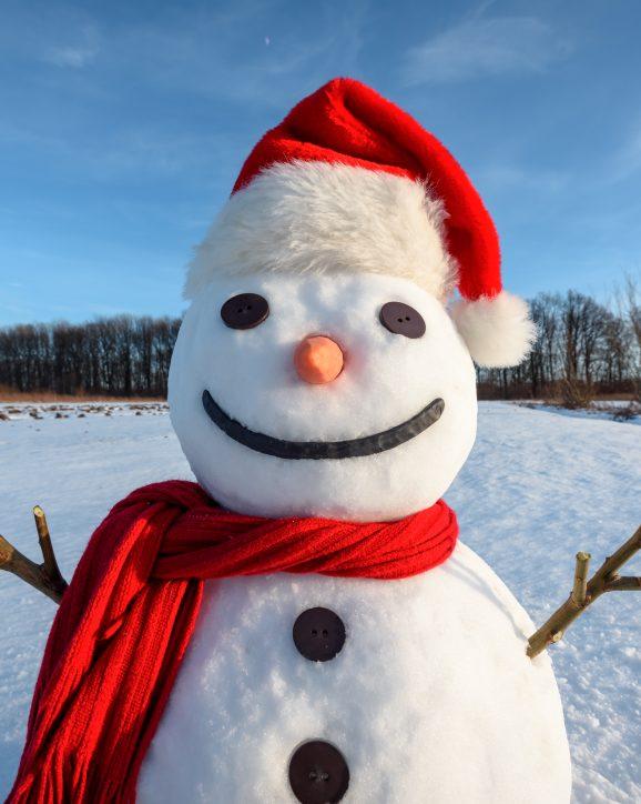 10 of the Best Fun Winter Field Trips